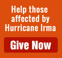 Help those affected by Hurricane Irma