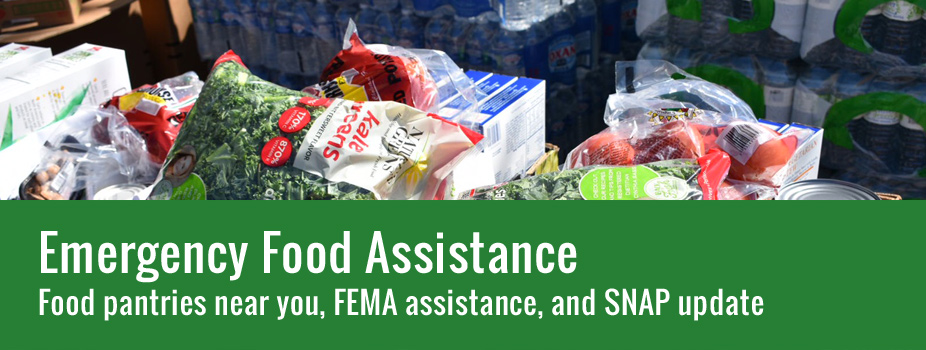 Click here if you need emergency food assistance